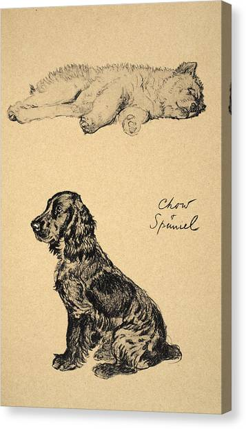 Cocker Spaniels Canvas Print - Chow And Spaniel, 1930, Illustrations by Cecil Charles Windsor Aldin