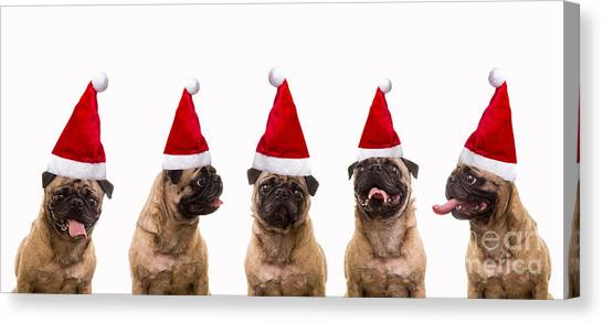 Tongue Canvas Print - Christmas Caroling Dogs by Edward Fielding