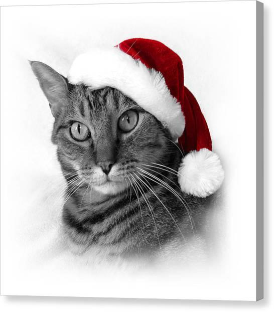 Christmas Cat 1 Canvas Print