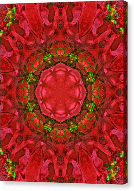 Christmas Kaleidoscope Iv Canvas Print