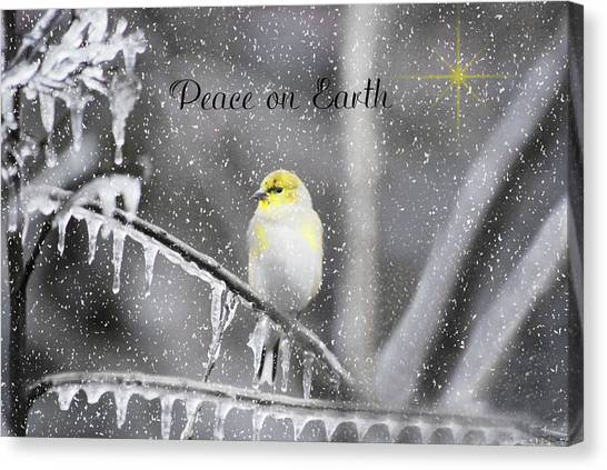 Christmas Peace Canvas Print