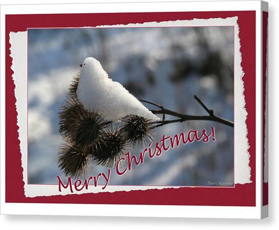 Christmas Snow Bird Canvas Print