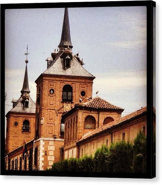 Storks Canvas Print - Church Roof And Stoks by Ana V