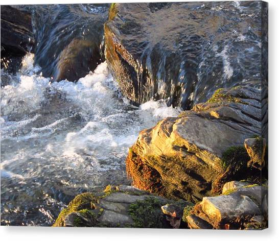 Churning Little Waterfalls On The Watauga Canvas Print