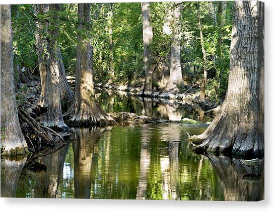 Cibolo Creek - 3 Canvas Print