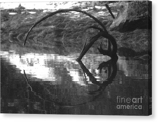 Circle And Heart Canvas Print
