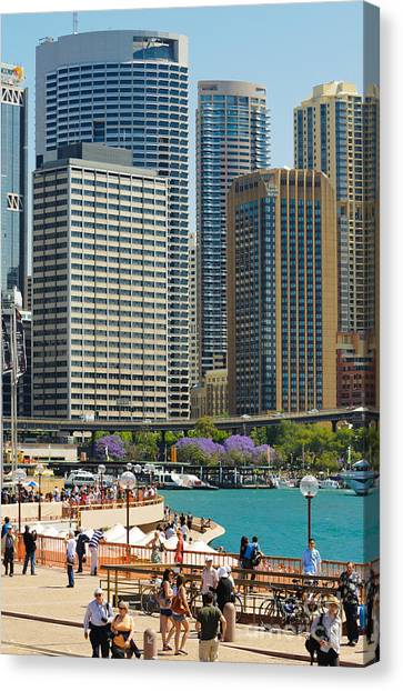 Circular Quay - Sydney - Australia - With Skyscrapers And A Hint Of Purple Jacaranda Canvas Print