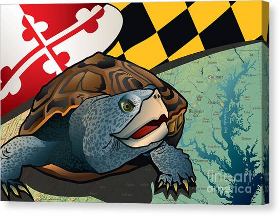 Diamondbacks Canvas Print - Citizen Terrapin Maryland's Turtle by Joe Barsin