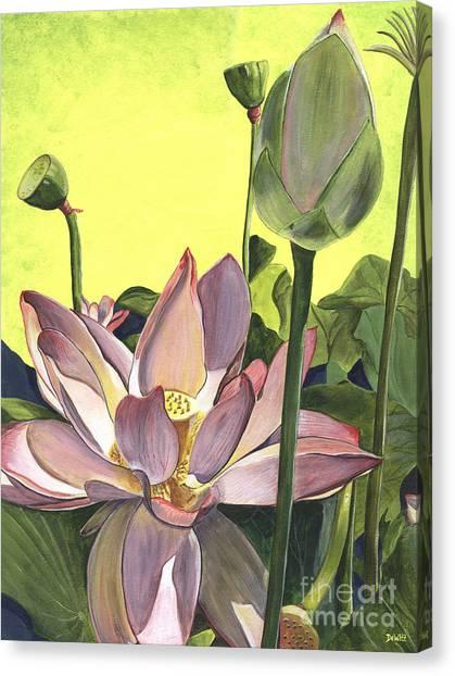Plant Canvas Print - Citron Lotus 2 by Debbie DeWitt