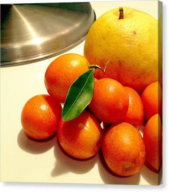 Grapefruits Canvas Print - #citrus #orange #grapefruit by Damien Lamar