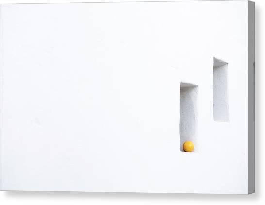 Citrus Simplicity Canvas Print
