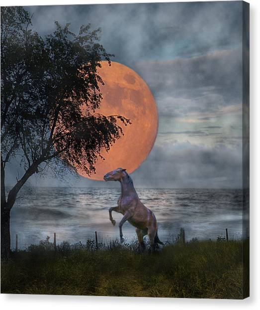 Southwest Canvas Print - Claiming The Moon by Betsy Knapp