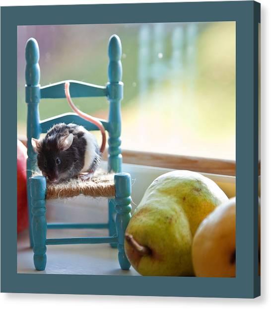 Clara's Favorite Chair Canvas Print