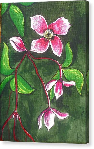 Canvas Print - Clematis Montana Rubins by Kathy Spall