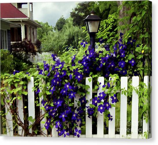 Clematis On White Picket Fence Painting Effect Canvas Print