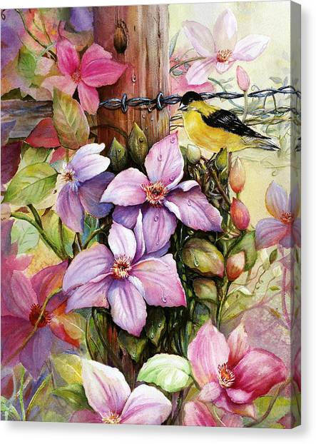 Clematis Vine And Goldfinch Canvas Print
