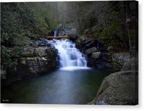 Clemmer Falls Canvas Print