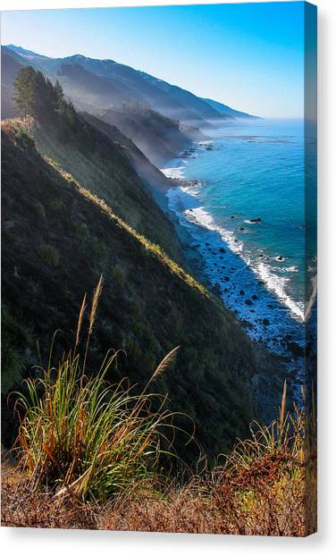 Cliff Grass At Big Sur Canvas Print