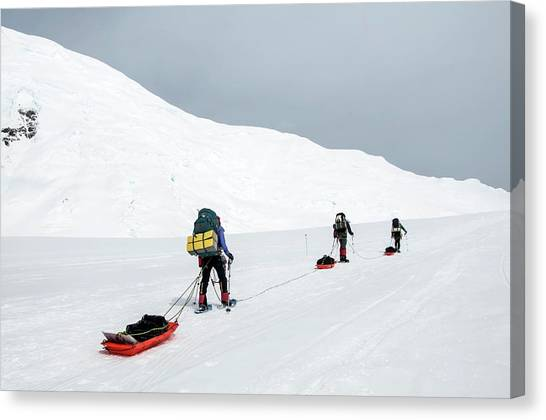 Backpacks Canvas Print - Climbers Drag Sleds Of Gear On Mount by Alasdair Turner