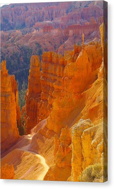 climbing out of the Canyon Canvas Print