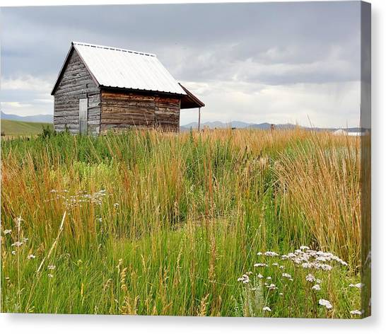 Cline Ranch Outbuilding II Canvas Print