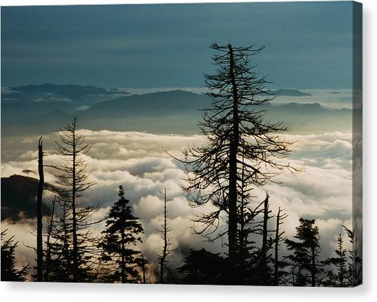 Clingman's Dome Sea Of Clouds - Smoky Mountains Canvas Print