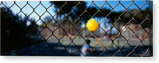 Chain Link Fence Canvas Print - Close-up Of A Tennis Ball Stuck by Panoramic Images
