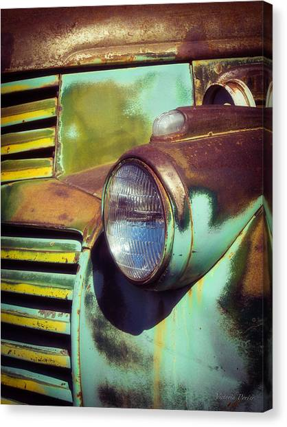 Close View Of A Fading Beauty Canvas Print