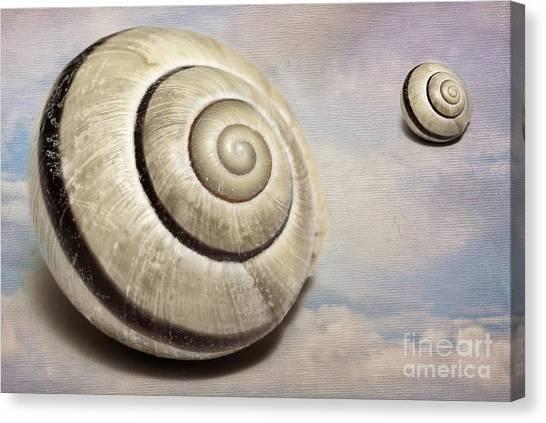 Cloud Shells Canvas Print