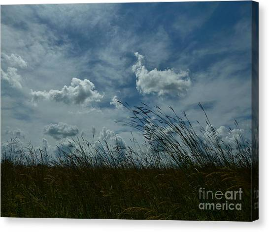 Clouds And Grass Canvas Print