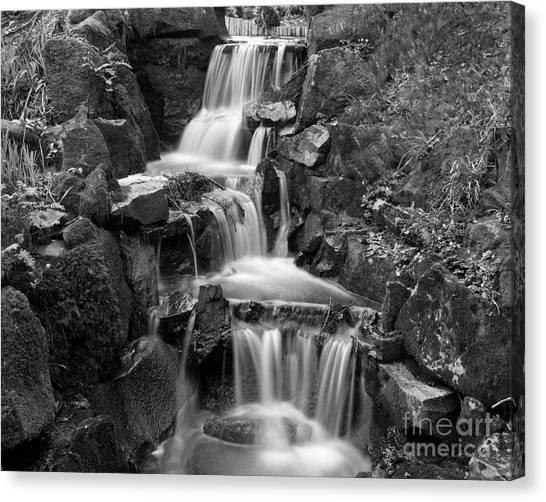 Clyne Park Waterfall Canvas Print