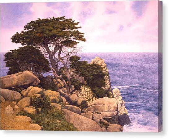 Coast At Lobos Canvas Print