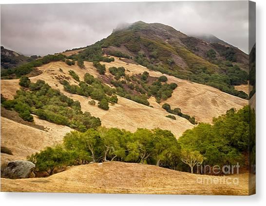 Coast Hills Canvas Print