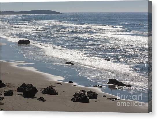 Coast Near Bodega Bay - 355 Canvas Print by Stephen Parker