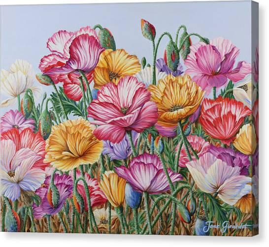 Coastal Poppies Canvas Print