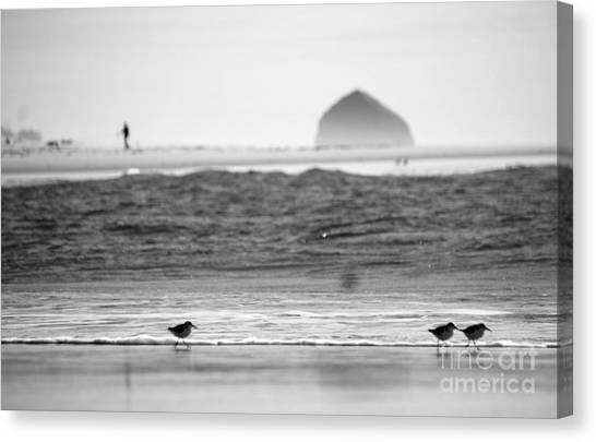 Coastal Stroll Canvas Print