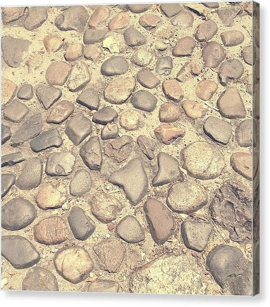South Carolina Canvas Print - Cobblestone by Mackenzie Martin