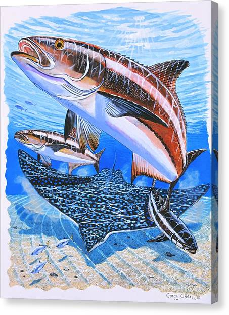 Spearfishing Canvas Print - Cobia On Rays by Carey Chen