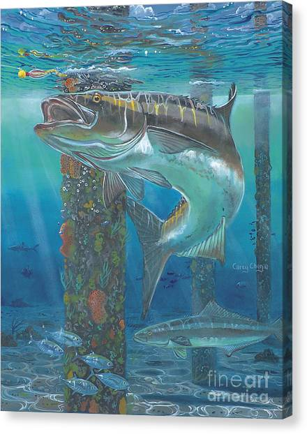 Spearfishing Canvas Print - Cobia Strike In0024 by Carey Chen
