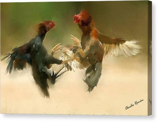 Cockfight Canvas Print