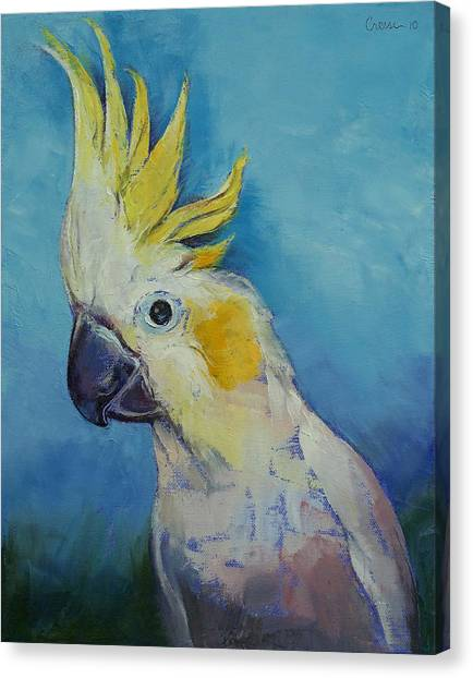 Cockatoo Canvas Print - Cockatoo by Michael Creese