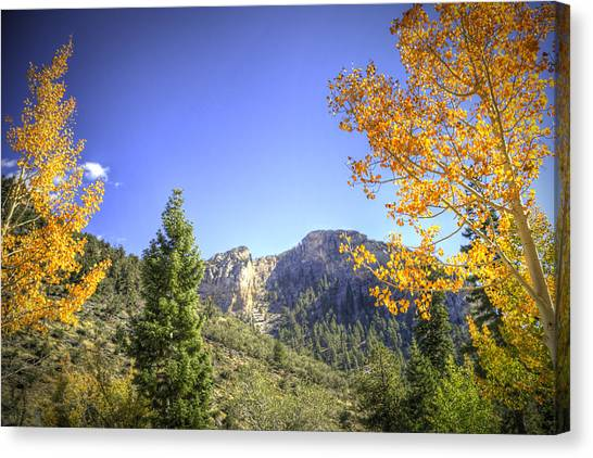 Cockscomb Ridge Canvas Print