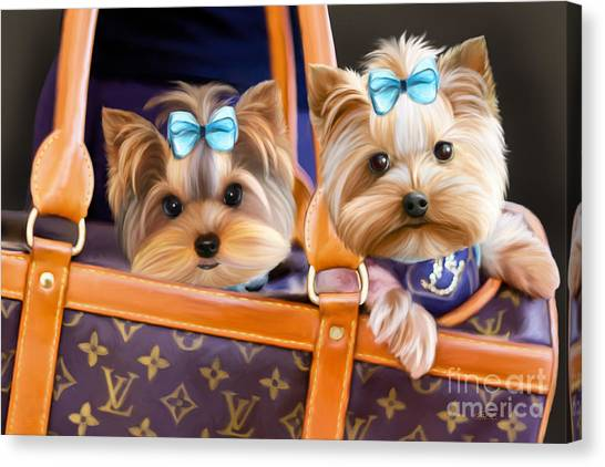 Coco And Lola Canvas Print