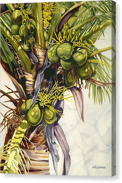 Coconut Bouquet Canvas Print