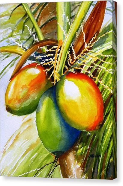 Coconut Canvas Print - Coconuts by Carlin Blahnik CarlinArtWatercolor