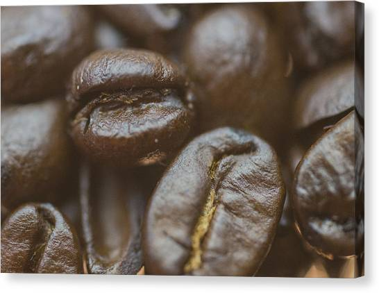 Coffee Plant Canvas Print - Coffee Beans Macro 2 by David Haskett II