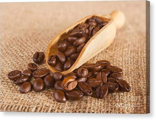 Coffee Beans Canvas Print - Coffee Beans Spilling From A Scoop by Colin and Linda McKie