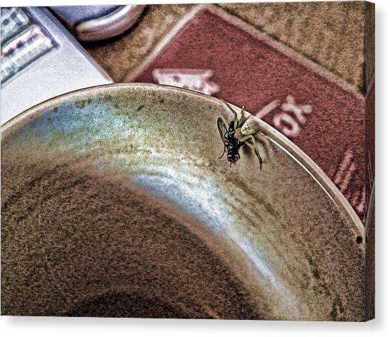 Coffee Cup Spider Fly Oh My Canvas Print