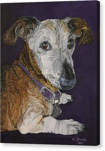Colbi Canvas Print