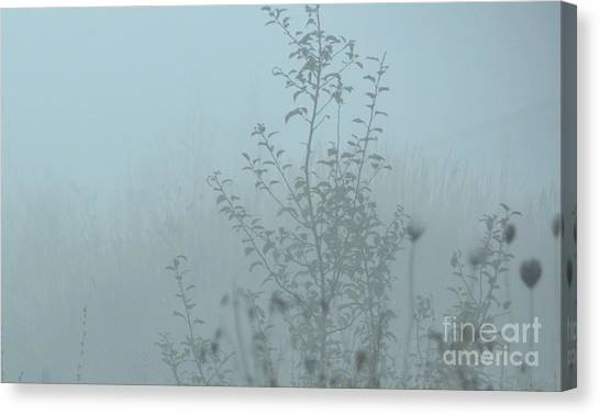 Cold Blues Canvas Print
